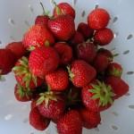 Recept: Strawberry crumble