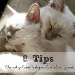 8 tips om beter te slapen