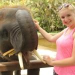 Bali: Taro olifantenpark