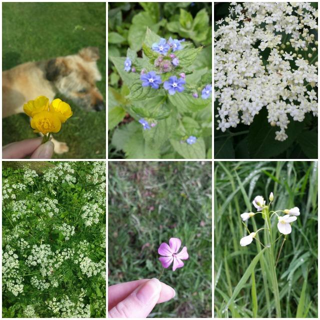 collage bloemen.