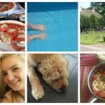 Life with Rosie week 31