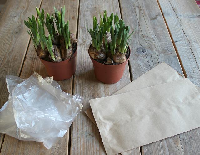 De Papieren Zak : Papieren zak voor het verpakken van kolen u cantraciet kabouter
