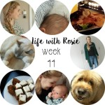 Life with Rosie week 44