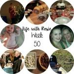 Life with Rosie week 50