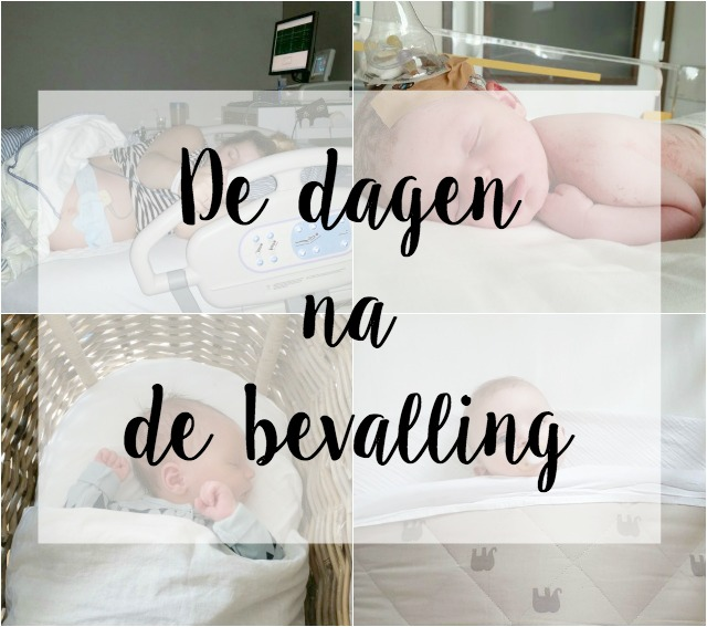 Flynn bevalling