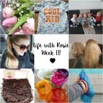 Life with Rosie week 11: Gezelligheid en heel veel baby's!