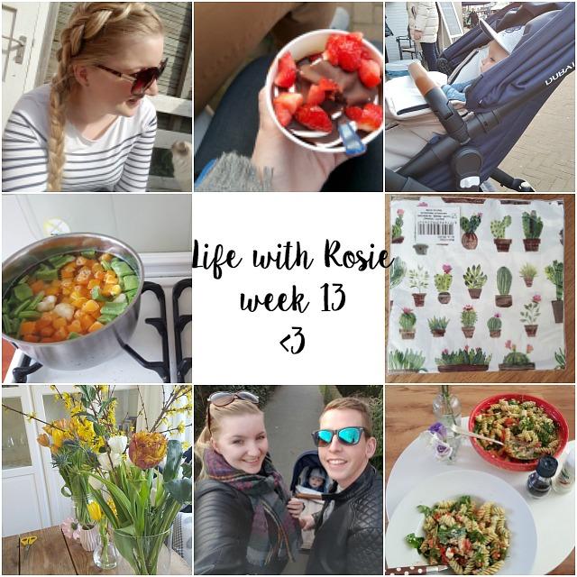 Life with rosie week 13