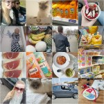 PLOG | Shoppen in Duitsland en nieuwe auto kopen