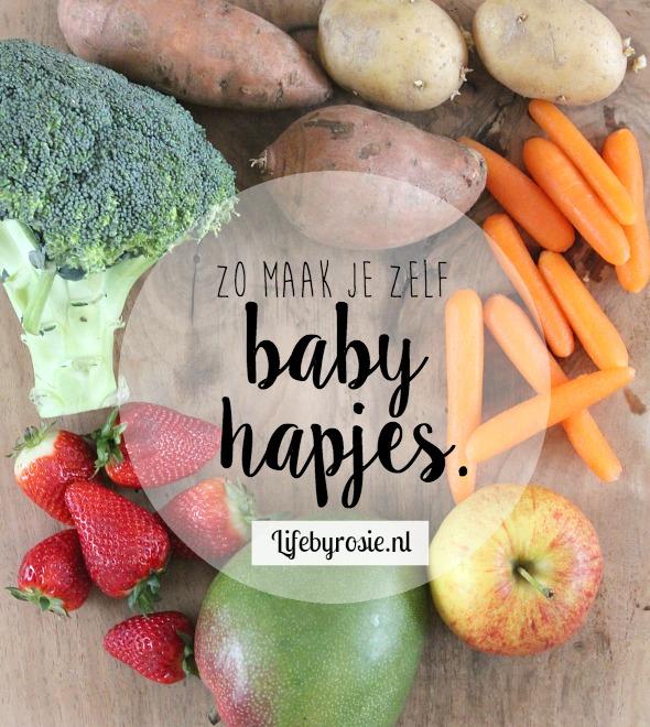 hapjes voor baby 6 maanden