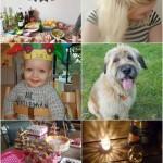 Life with Rosie: Flynn 1 jaar, babyshower en een nieuw neefje!