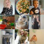 Life with Rosie week 41| Weer aan het werk