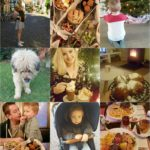 Life with Rosie week 1 | Vakantieplannen, girlsnight, veel eten en gezelligheid