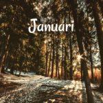 Mijn januari ♥