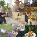 Life with Rosie week 5 | Happiness café, gevallen en een bijzonder lunchtentje!