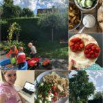 Life with Rosie week 32| Keihard werken aan mijn eigen bedrijf!