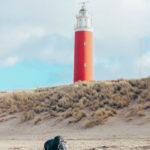 De ultieme Texel guide! Meer dan 30 tips met wat te doen, eten en slapen!