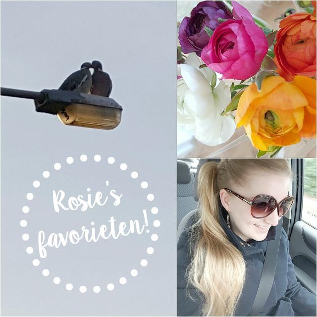 rosie's favorieten