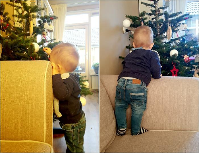 kerstboom-zetten