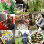 Life with Rosie week 15 | Veel buiten zijn, Pasen vieren en eindelijk weer eens naar de bieb