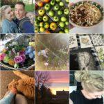 Life with Rosie week 41 | Waar blijft die herfst?
