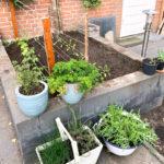 Eenvoudig leven | Moestuin update: plantjes gaan de tuin in!