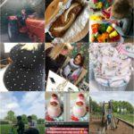 Life with Rosie week 18